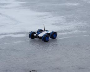 Rover on Pond